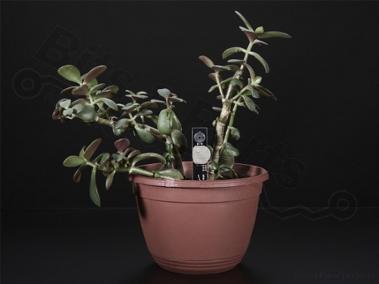 Elektronisch plant water alarm